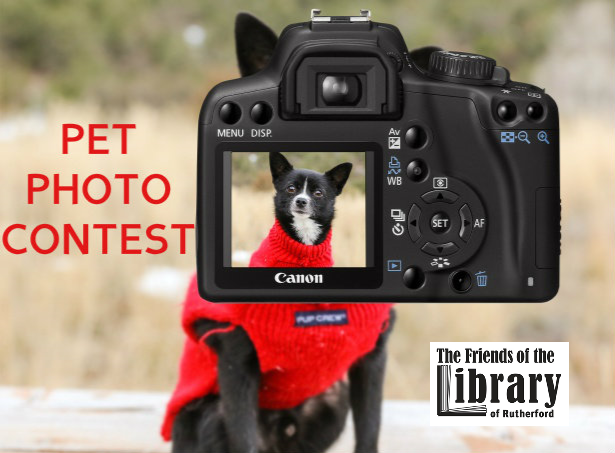 Friends Officially Accepting Pet Photo Contest Submissions!
